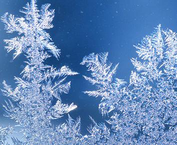 Frostempfindliche Produkte
